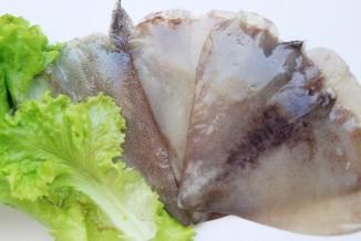 aletas-de-calamar web