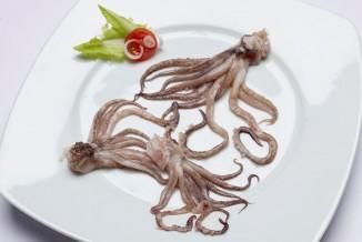 tentaculos-de-calamar_720x480